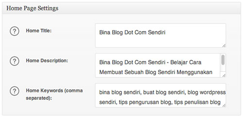 home-page-settings-all-in-one-seo-pack